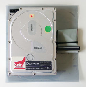 Quantum Q250 76-45004 / Apple 88167-0251M 5.25'' internal 50-pin SCSI 53MB hard disk drive HDD w/ cable - 40MB vintage retro 80s